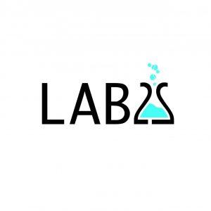 LAB 2 S Logo Design